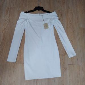 Torn by Ronny Kobo white bodycon dress